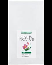 Herbata z czystka - Cistus Incanus
